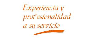 Experiencia y Profesionalidad